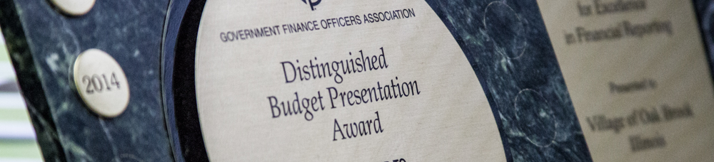 Distinguished Budget Presentation Award Banner